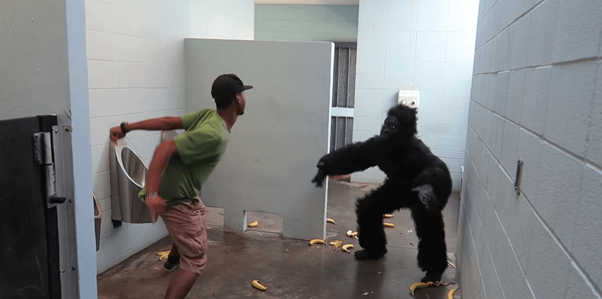 Broma del gorila